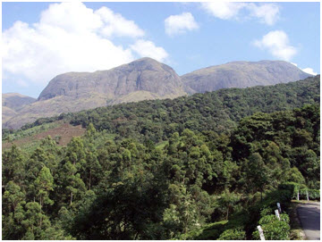 Anaimudi, the highest peak of the Western Ghats near Munnar